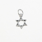 CM38 Star of david charm