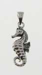 P123 Seahorse
