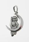 P131 Owl sat moon