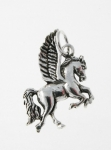 P198 Pegasus