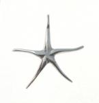 P273 Starfish Pendant