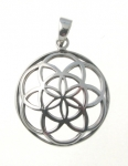 P82 Seed of Life Pendant